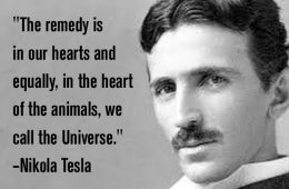 addiction recovery ebulletin tesla quote