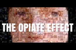 addiction recovery ebulletin opiate effect