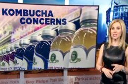 addiction recovery ebulletin kombucha concerns