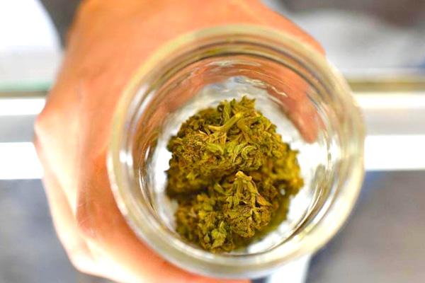 addiction recovery ebulletin sober guide marijuana