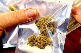 addiction recovery ebulletin marijuana states better