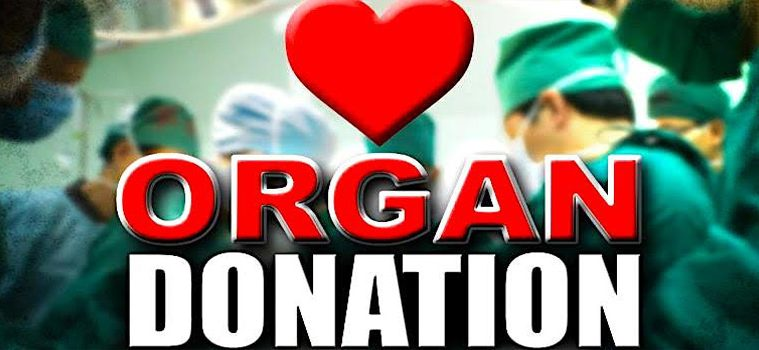 addiction recovery ebulletin organ donors help shortage