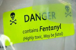 addiction recovery ebulletin fentanyl drives deaths