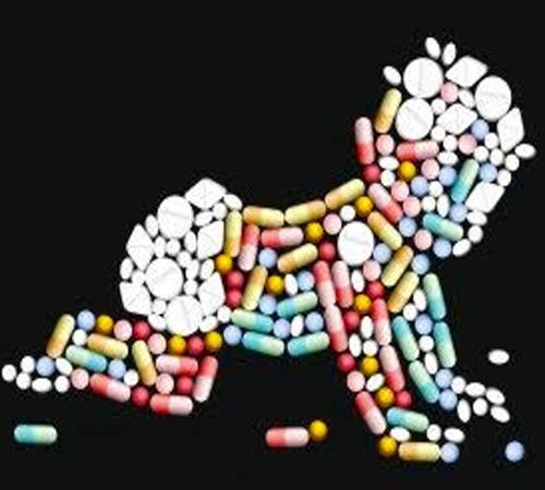 addiction recovery ebulletin addicted baby myth