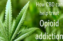 addiction recovery ebulletin CBD effective