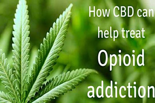 addiction recovery ebulletin CBD effective