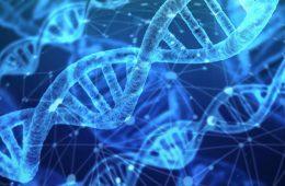 addiction recovery ebulletin addiction gene