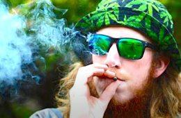 addiction recovery ebulletin Cannabis