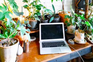 addiction recovery ebulletin working from home